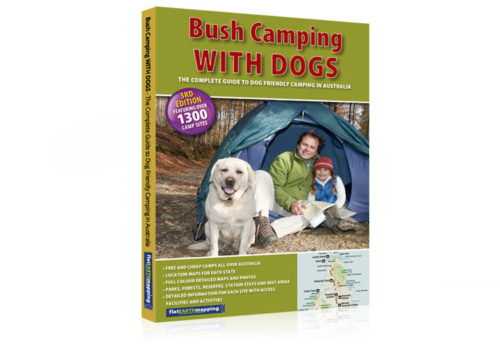 Bush-Camping-With-Dogs-750