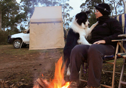 Bush-Camping-With-Dogs-Image-01