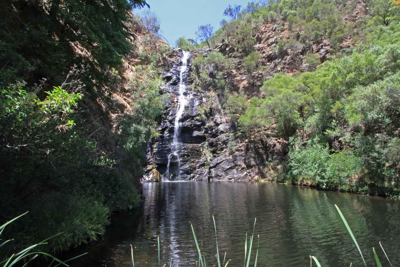 First waterfall, Waterfall Gully about 100m walk from the carpark